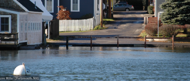 What are King Tides?